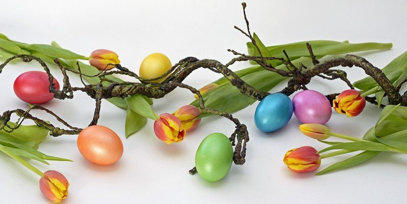 Best WordPress Easter Deals & Coupon Codes 2017