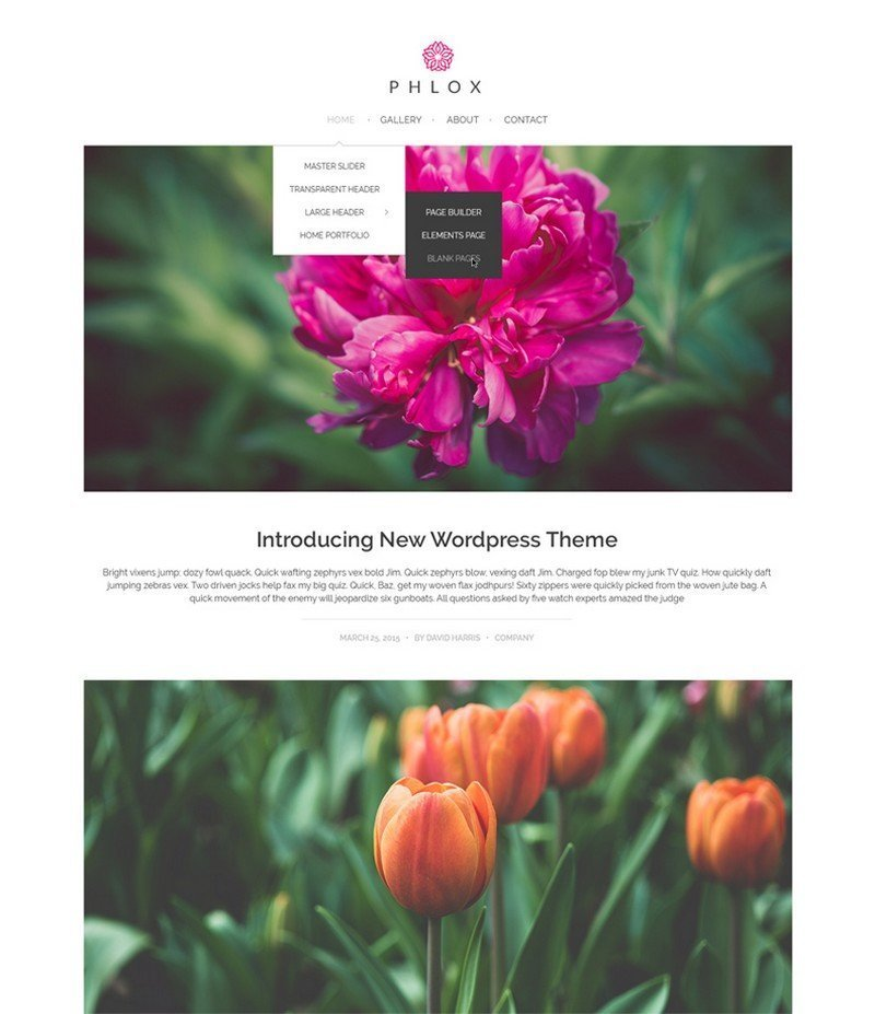 Phlox - A Stylish & Powerful WordPress Theme for Free