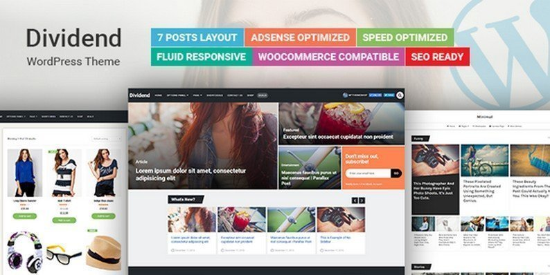 Dividend WordPress Theme