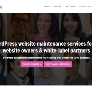 WP Buffs Website Maintenance Services