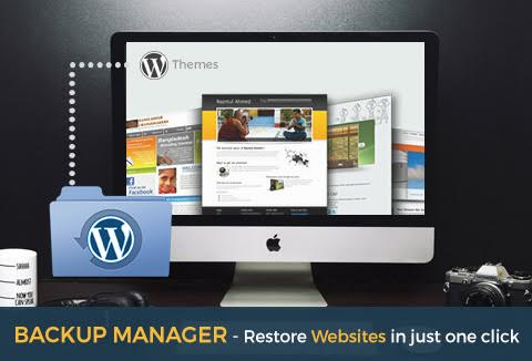 With a WordPress plugin as WP Backup Manager, you get peace of mind with regular backups.