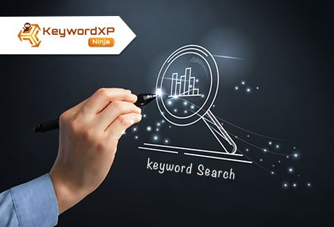 KeywordXP Ninja tool helps you find long tail real keywords, provides keyword trend analysis.