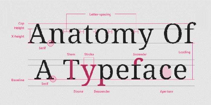 Principles of typography will help you create professional designs.
