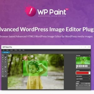 WP Paint Pro - Advanced WordPress Image Editor Plugin