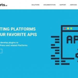 API Experts