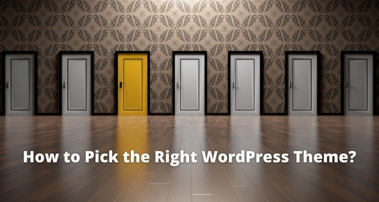 How to Pick the Right WordPress Theme for Your Web Portal?